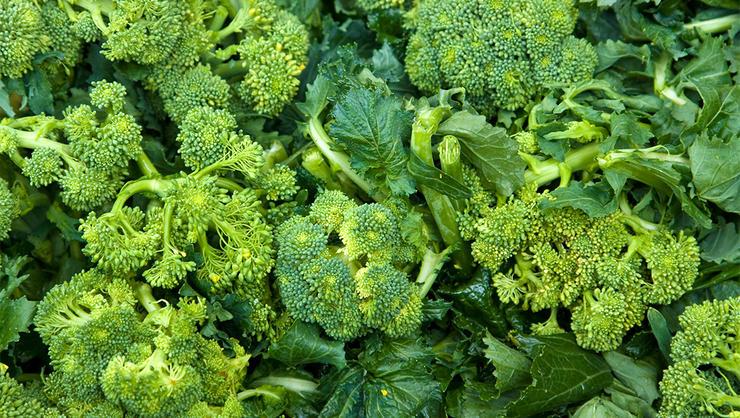 Broccoli al Frascati