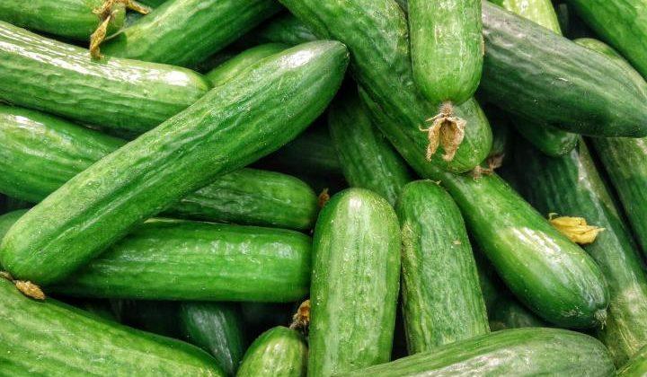 Tzatziki (Cucumber Salad)
